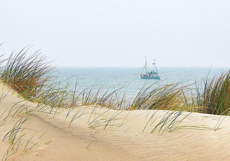 Familienurlaub an der Nordsee Erfahrungen Vergleich